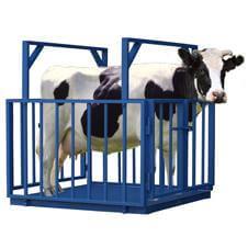 Для взвешивания животных весы